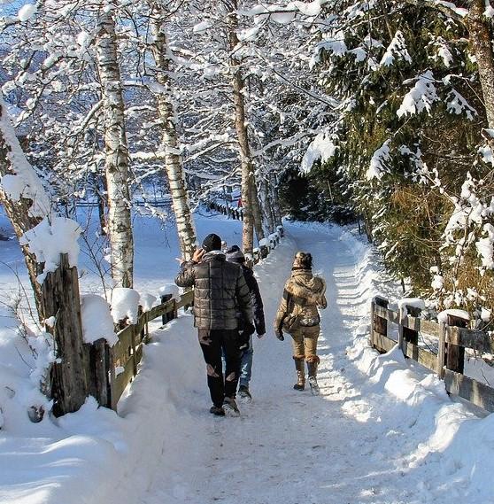 winter-4714109_1280PuGtCt8aEhBdf